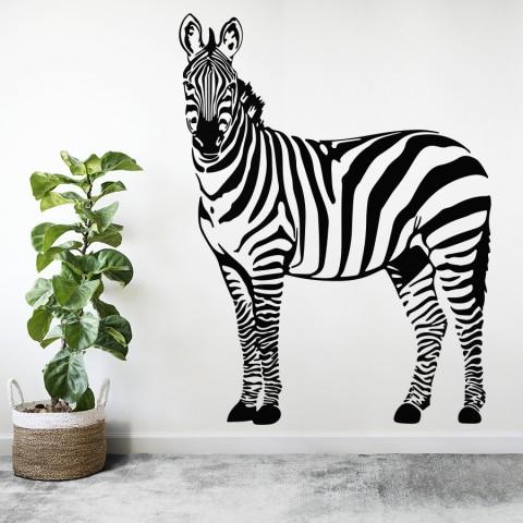 Vinilos Decorativos - Cebra