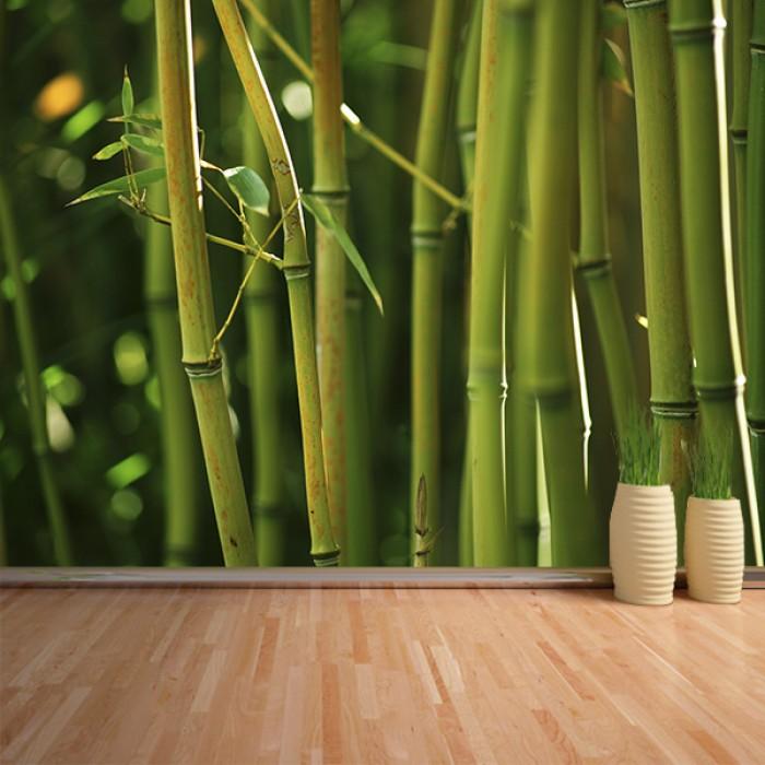 Fotomural - Bambú