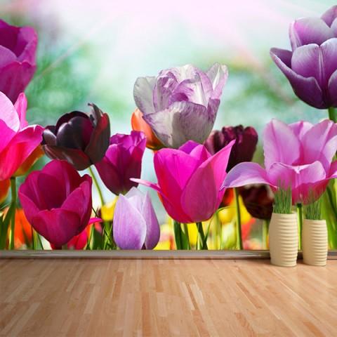 Fotomural - Tulipanes