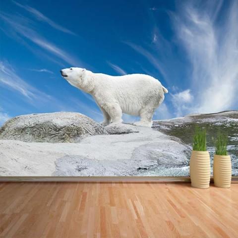 Fotomural - Oso polar