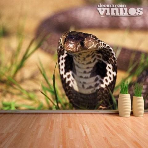 Fotomural - Cobra