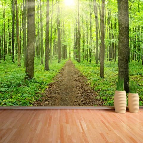Fotomural - Camino en Bosque