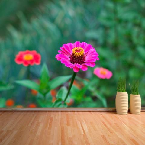 Fotomural - Flor rosa silvestre