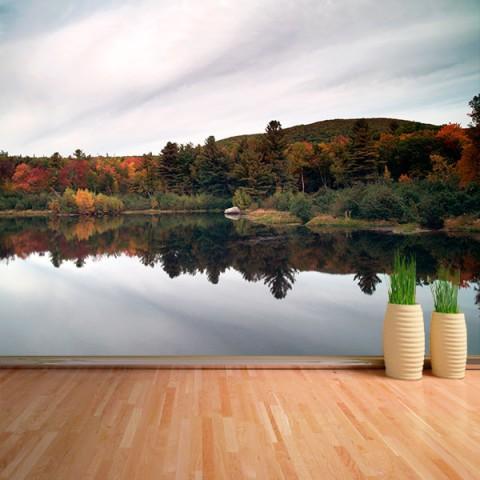 Fotomural - Bosque reflejado 2