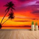 Fotomural - Atardecer con palmeras