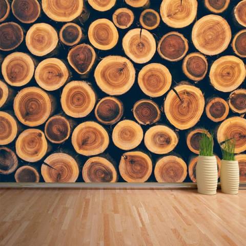 Fotomural - Troncos madera