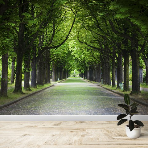 Fotomural - Camino entre arboles