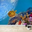 Fotomural -  Tortuga en arrecife
