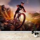 Fotomural - Mountain Bike