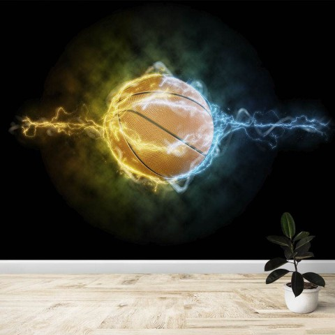 Fotomural - Balón de Baloncesto