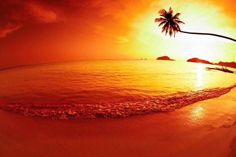 Fotomural - Atardecer en la Playa